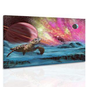 Obraz želva z vesmíru