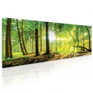 Obraz slunce v lese 55x25 cm
