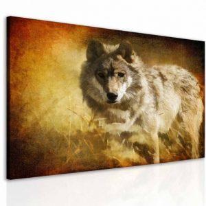 Obraz snový vlk 100x80 cm