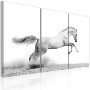Obraz - A galloping horse