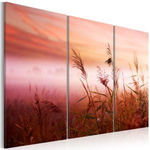 Obraz - A silent meadow