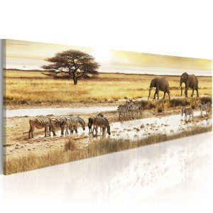 Obraz - Africa: at the waterhole