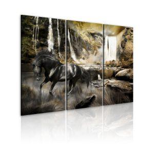 Obraz - Black horse and rocky waterfall