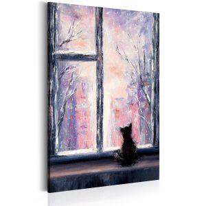 Obraz - Cat's Stories