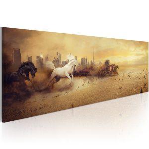 Obraz - City of stallions