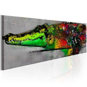 Obraz - Colourful Beast