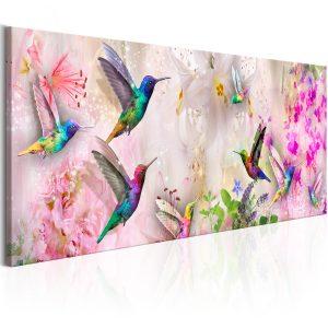 Obraz - Colourful Hummingbirds (1 Part) Narrow
