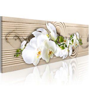 Obraz - Desert Flower
