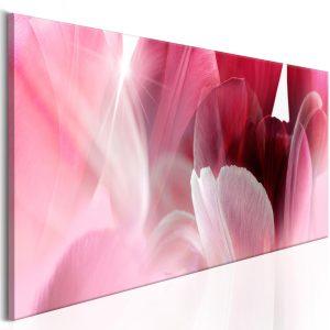 Obraz - Flowers: Pink Tulips