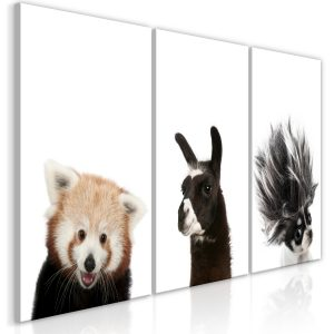 Obraz - Friendly Animals (Collection)