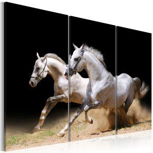 Obraz - Horses- power and velocity