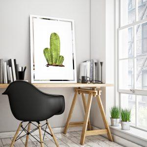Obraz Kaktus na zrkadle Mirrora 68 - 60x40 cm