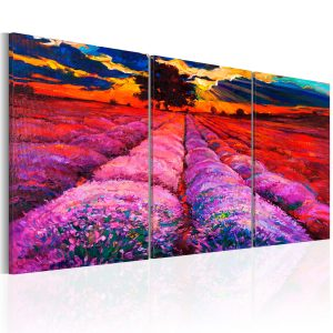Obraz - Land of Colours