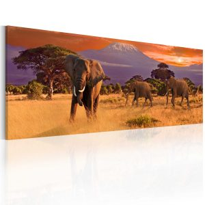 Obraz - March of african elephants