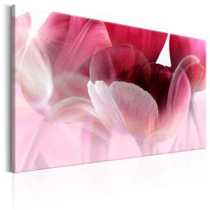 Obraz - Nature: Pink Tulips