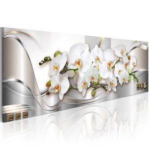 Obraz - Orchids II