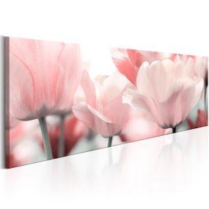 Obraz - Pink Tulips