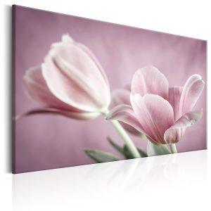 Obraz - Romantic Tulips