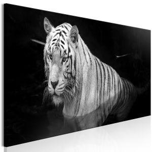 Obraz - Shining Tiger (1 Part) Black and White Narrow