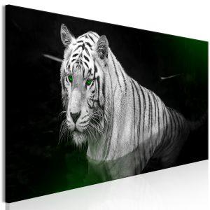 Obraz - Shining Tiger (1 Part) Green Narrow