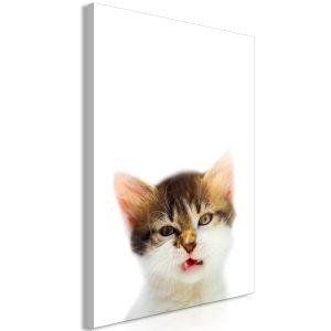 Obraz - Vexed Cat (1 Part) Vertical