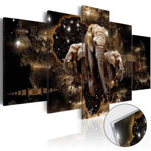 Obraz na akrylátovom skle - Brown Elephants [Glass]
