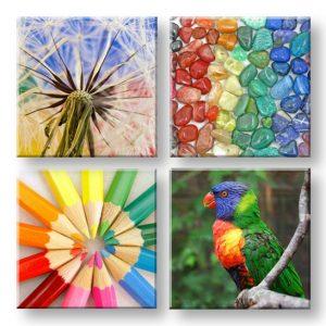 Obraz na stenu Colorful vibes 4 dielny XOBKOL20E42