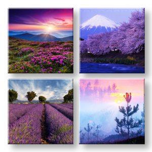 Obraz na stenu Everywhere purple 4 dielny XOBKOL21E42