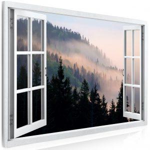 Obraz pohled na les v mlze
