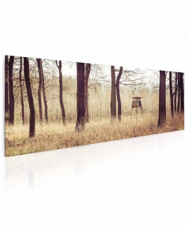 Obraz Posed v lese 55x25 cm