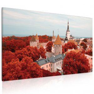 Obraz Město Tallinn