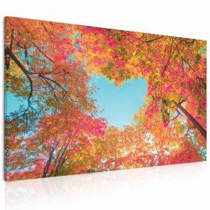 Obraz Srdce v korunách stromů